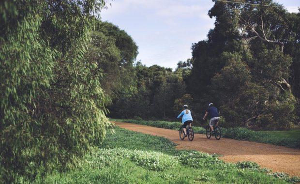 Wandandi Track Pic