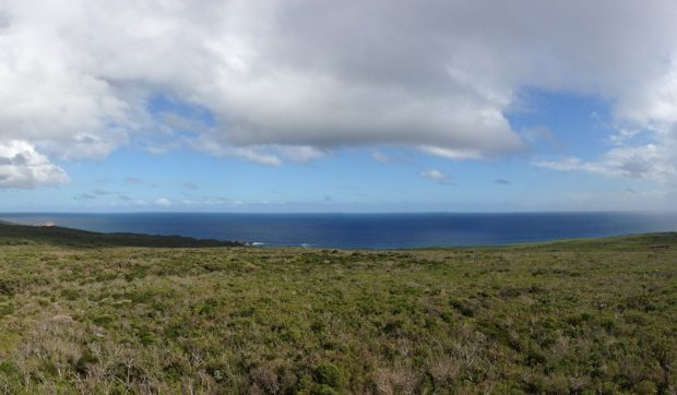 Cape Naturaliste Lighthouse Views