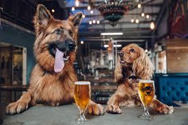 Margaret River Dog Friendly Breweries