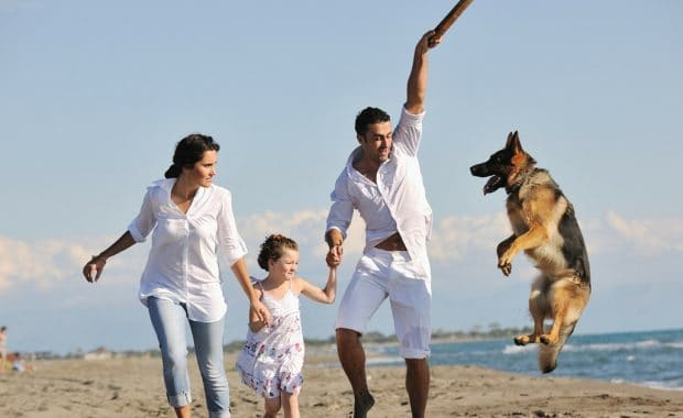 Pet Friendly Busselton